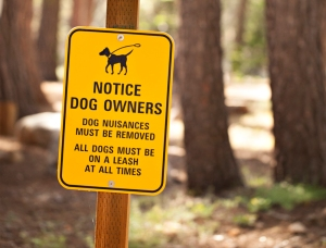 Sign in our campground.