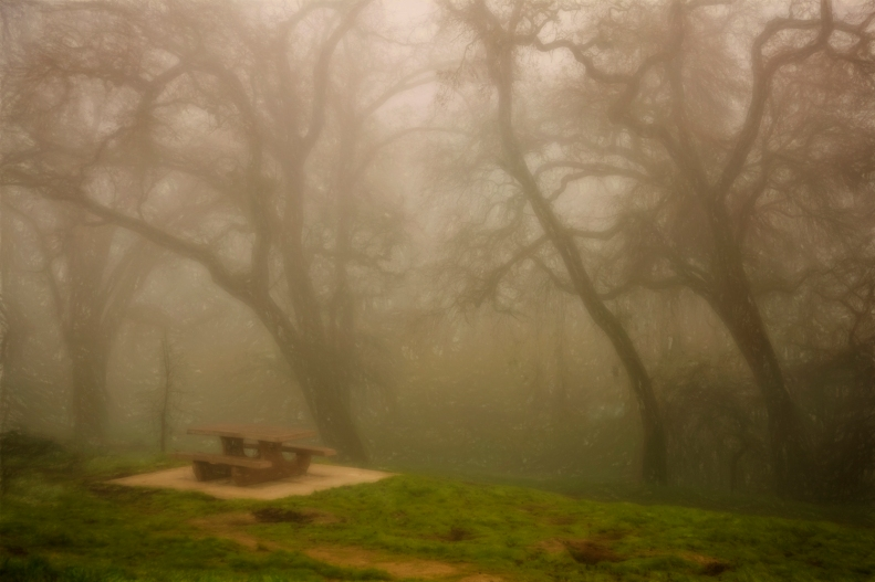 1-12-15 fog 2