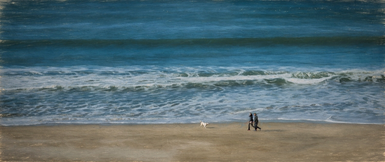 I don't know who is happier walking (running) along the beach... the dogs or the owners.  I think probably the dogs!