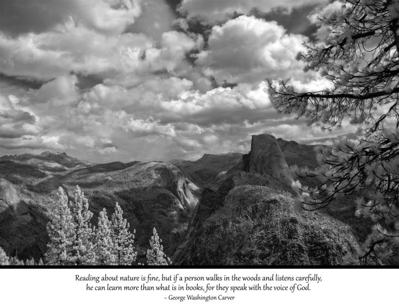 4-8-15 Yosemite Quotes 2