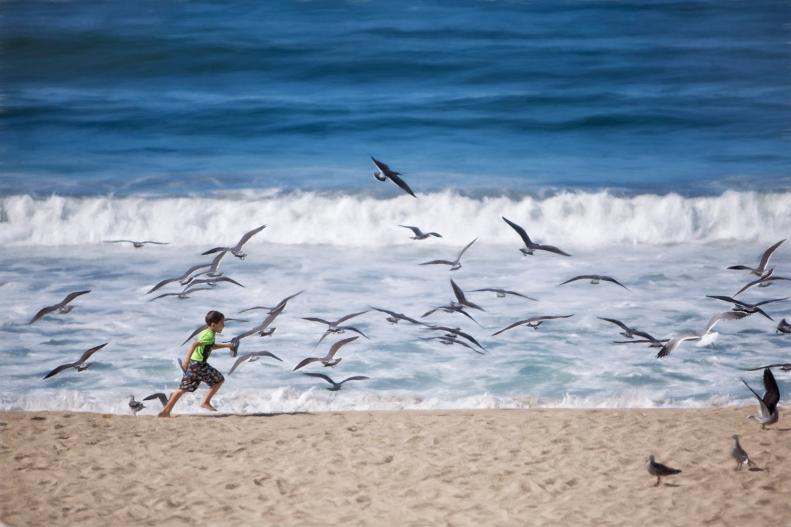 10-23-15 Boy with Birds