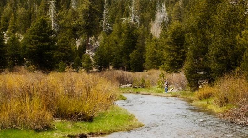 5-22-18 Dave Fishing