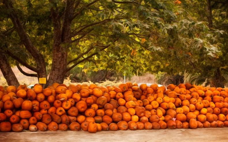 10-31-18 Pumpkins