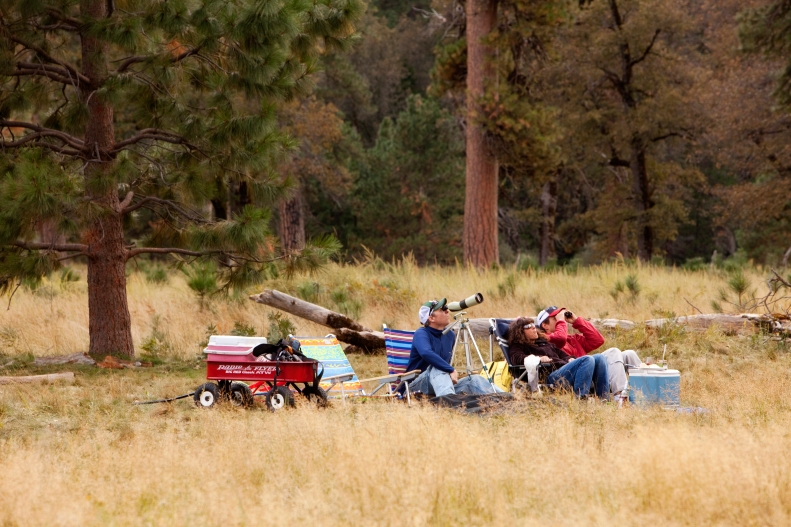 3-4-19 El Capitan meadow